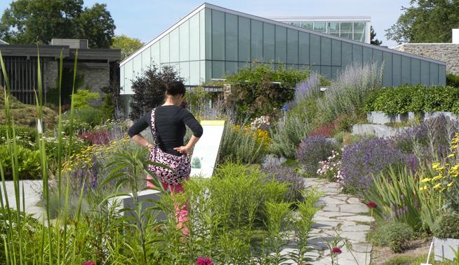 tbg-garden